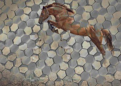 crazy-horse-01-900x600